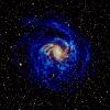 Havai Fişek (Fireworks) Gökadası (NGC 6946)