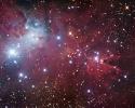 Koni (Cone) Bulutsusu & NGC 2264